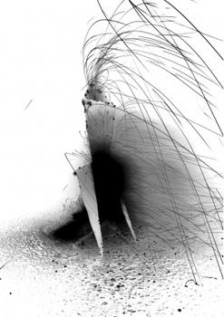 20111129072956-strange_beasts_image
