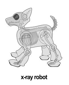 20111129233207-x-ray_robot