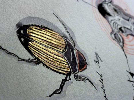 20111130111148-armelle-01-detail