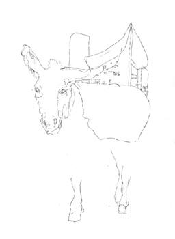 20111204163243-mule_-_ronchamp_100