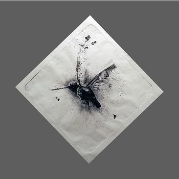 20111204171441-colibri3