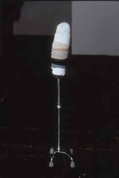 20111206230513-segmentedwormhead