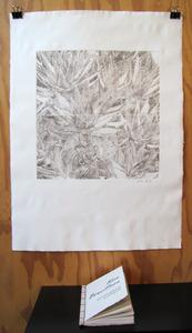 20111207173645-aloeprintmaking_3517