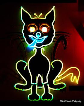 20111207225155-guthries_alley_cat_16x20_copy