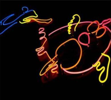 20111209152327-duckchasepig