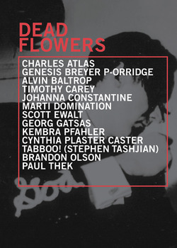 20111210141426-deadflowers