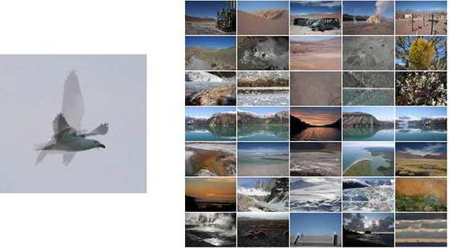 20111217034146-photography_necessa
