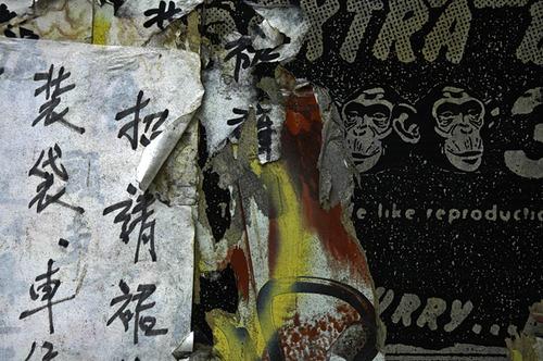 20111219093343-100chinese_monkey