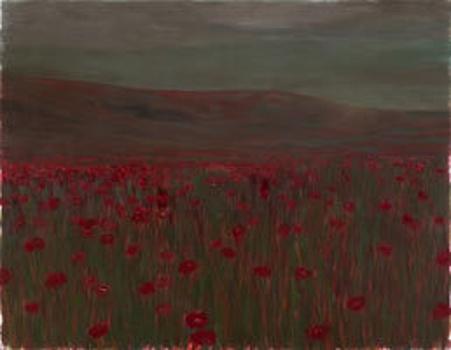 Celaya-wind-poppy-field