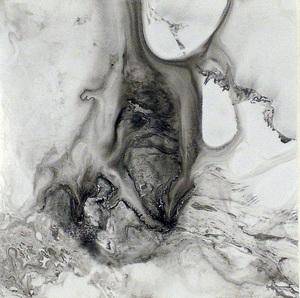 20111226180018-ecker__celestial_nest