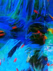 20111227174749-acquariogiovannigreppi