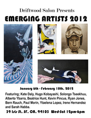 20111228205327-emergin_artists_2012_opens_jan_6th_at_driftwood_salon