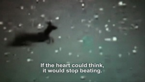 20111230171251-if_the_heart_could_think_it_would_stop_beating