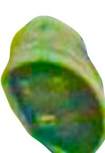 20120101153942-rogues59