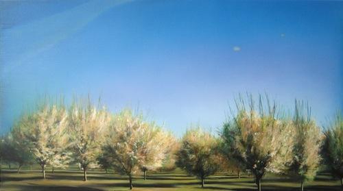 20120107211650-mdh-orchard-2
