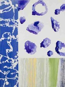 20120108010201-burchmanj_patterns-126_2010_48x36