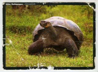 20120110095125-simon_clark_postcard_front