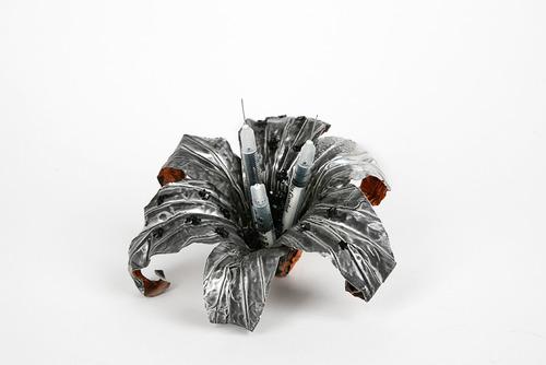 20120114210604-syringelily