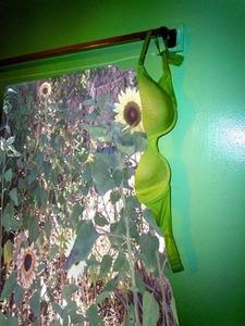 20120118232019-g_buckley_my_secret_garden_2