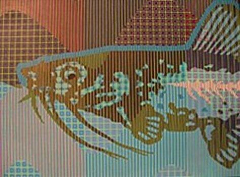 20120120164725-blue_fish