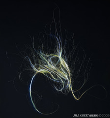 20131211193748-25_hair_42x45-prt_copy