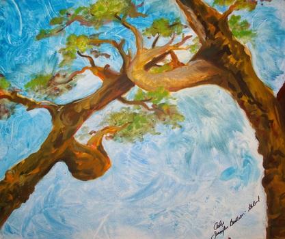 20120122011622-oaks_-_bumped_up