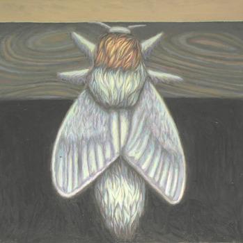 20120124024840-moth