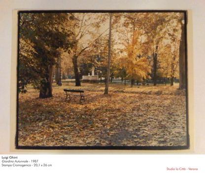 20120126030408-ghirri_giardino_autunnale_1987_stampa_cromogenica_20