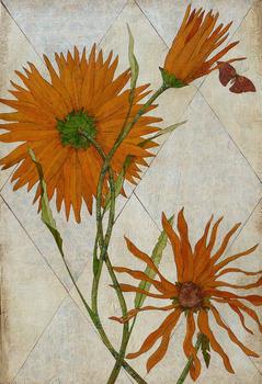 20120127183353-orange_flowers_2_x3_