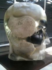 20120202185056-dupont_head_head