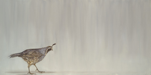 20120205025532-walking_quail_med_res