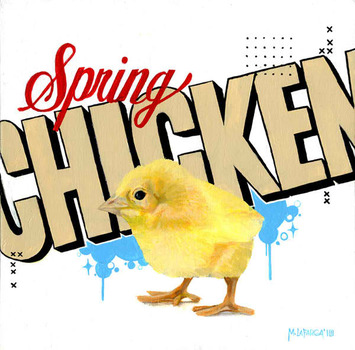 20120206224622-spring-chicken