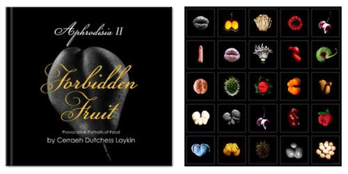 20120206225856-book_teaser