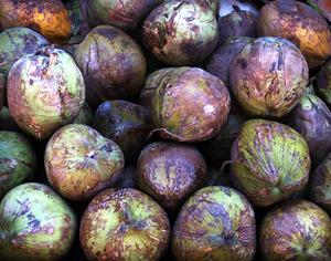 20120209233138-coconuts_final_print