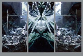 20120217191420-joshua-hagler_thebirth_lg