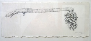 20120218014722-durhama