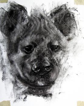 20120219180308-animal_one