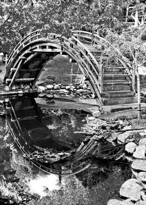 20120222034422-the_bridge
