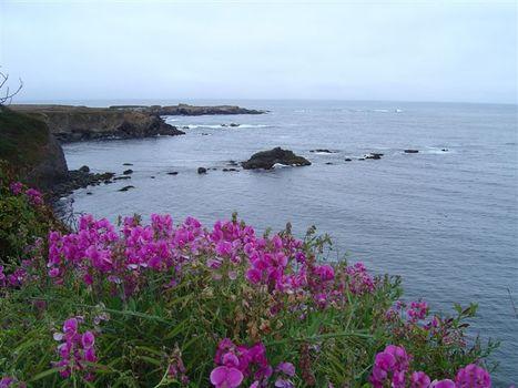 20120222062425-mendocino_coastline