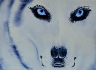 20120222092013-snow-wolf