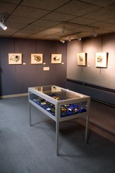 20120224165458-ana_zanic_oesterle_gallery