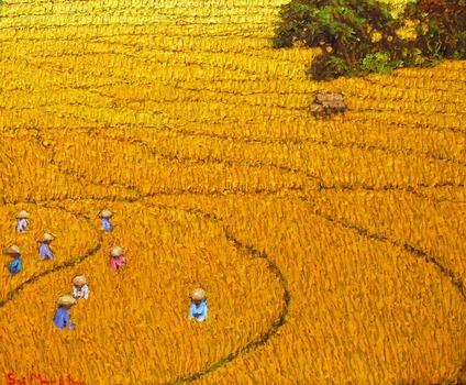 20120228000302-harvest_10