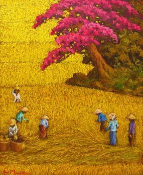 20120228013829-harvest_3
