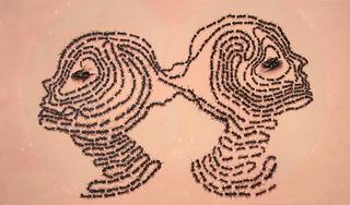 20120321191116-learner_pheromones