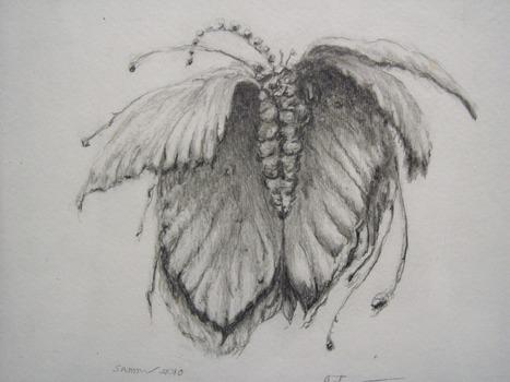20120301033945-leaf
