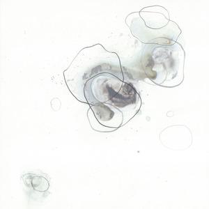 20120305040359-cosmos_7