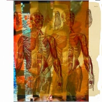 20120305121031-double_anatomy_with_digital_errors_2_12