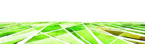 20120309161926-polders