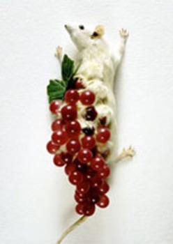 20120312000636-_-sculpture2012_fernandez