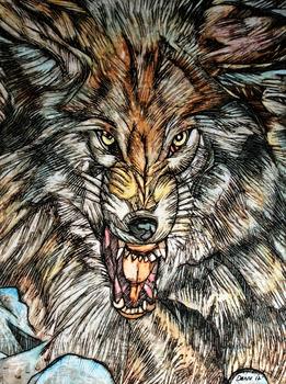 20120315220837-grey_wolf